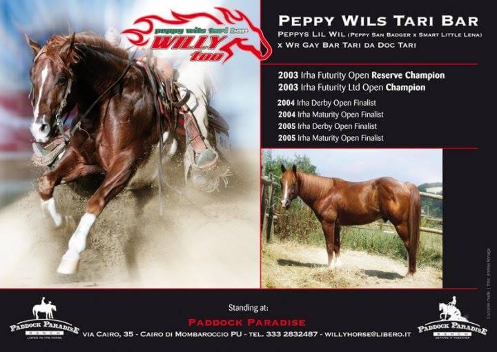 Peppy Wils Tari Bar